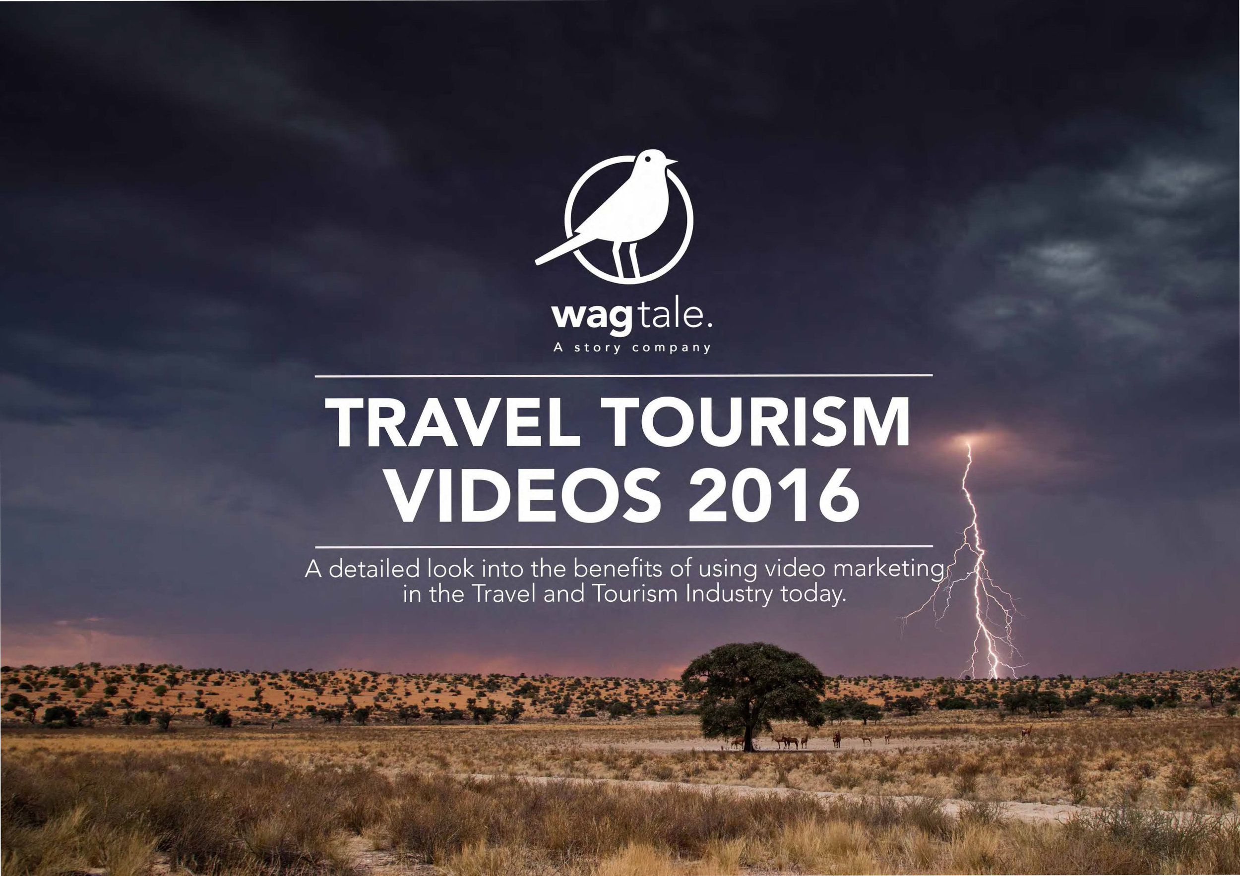 Wagtale Travel&Tourism Proposal-1.jpg