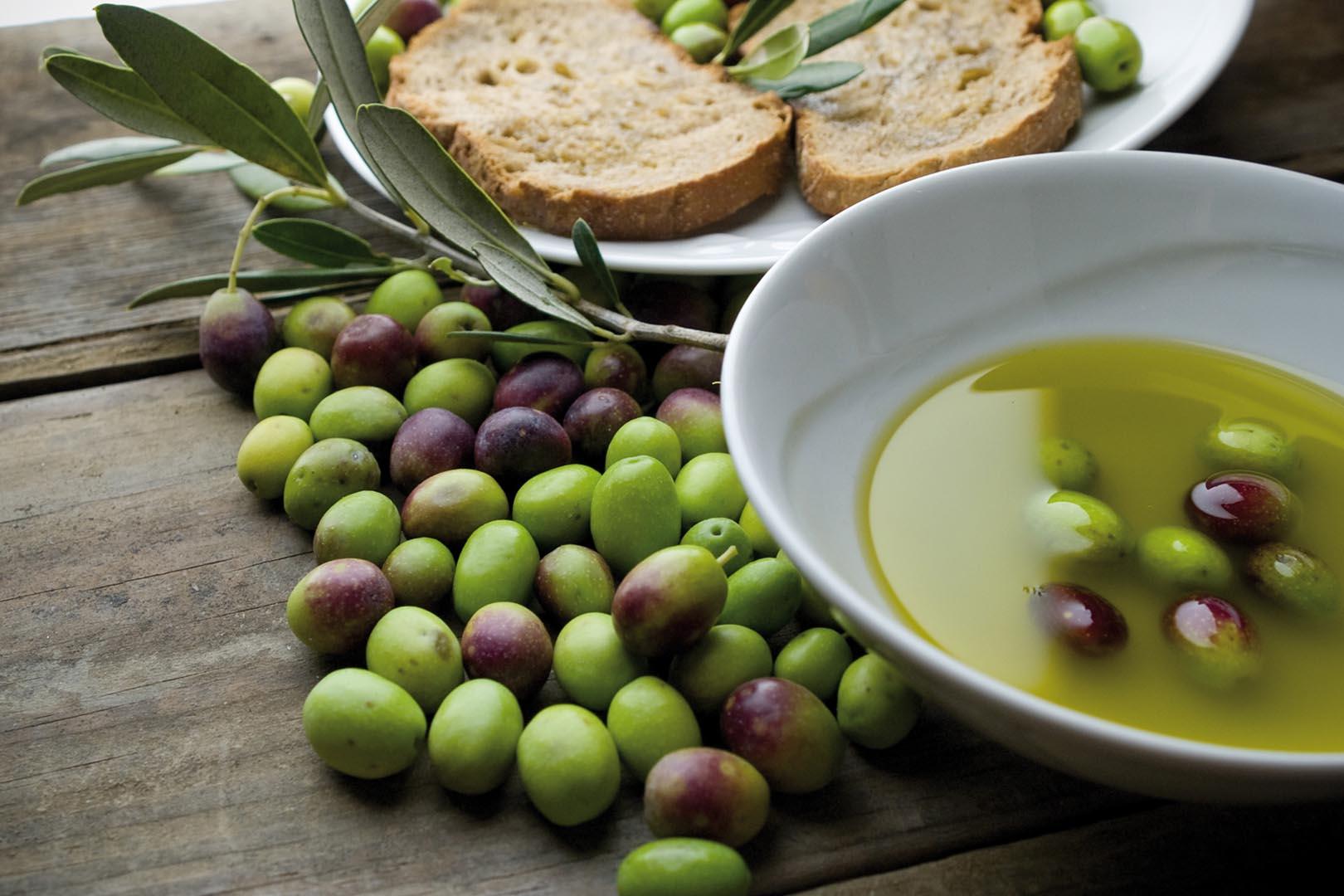Copy of La Selvotta Olive Grove