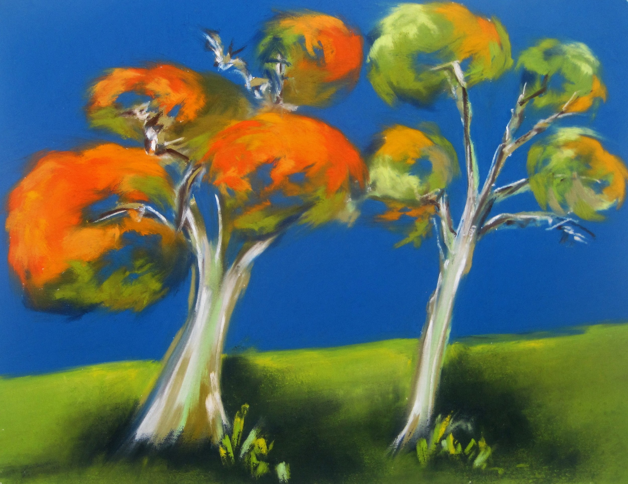 Trees on a Hill - Trelissick (SOLD)