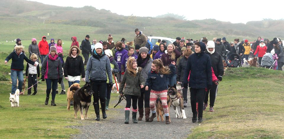 Sponsored Dog Walk @ Pembroke Jan 2016. Lots of lovely doggies and their owners turned out in chilly conditions and raised over £2,000.00 for Jonah.