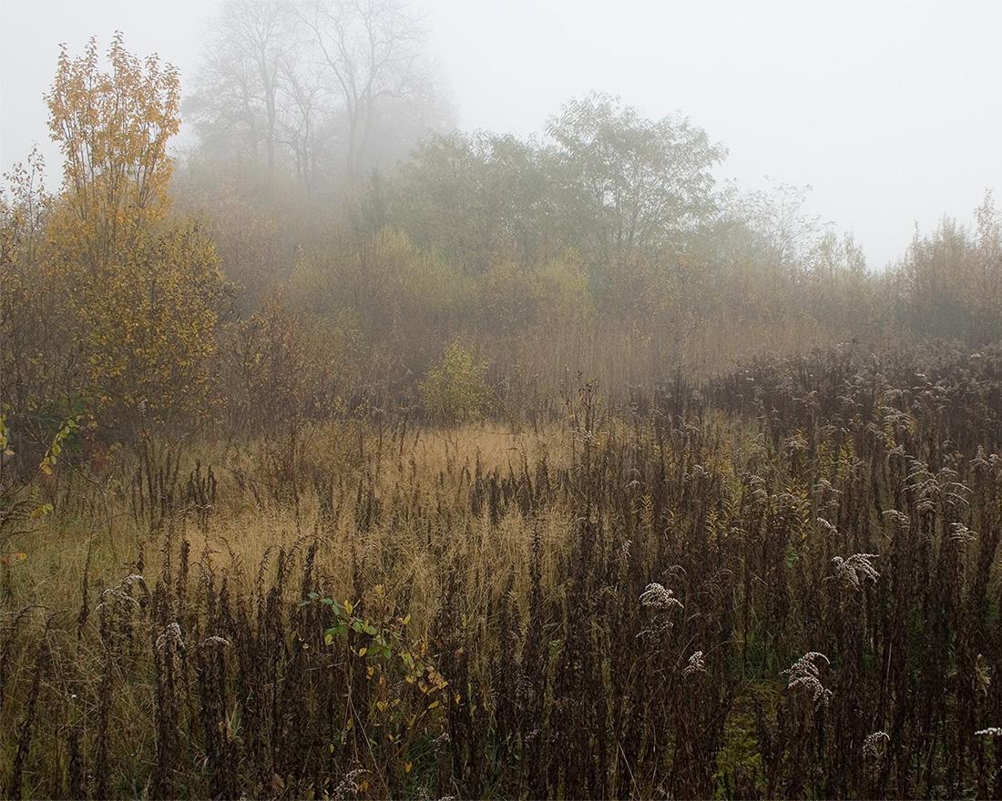 Jeanne Martel_landscapes_03.jpg