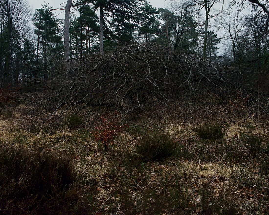 Jeanne Martel_landscapes_04.jpg