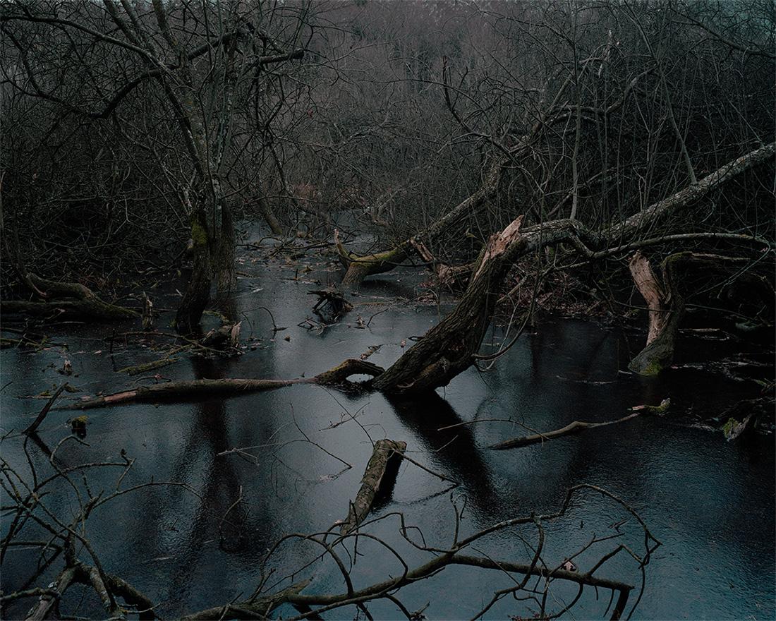 Jeanne Martel_landscapes_07.jpg
