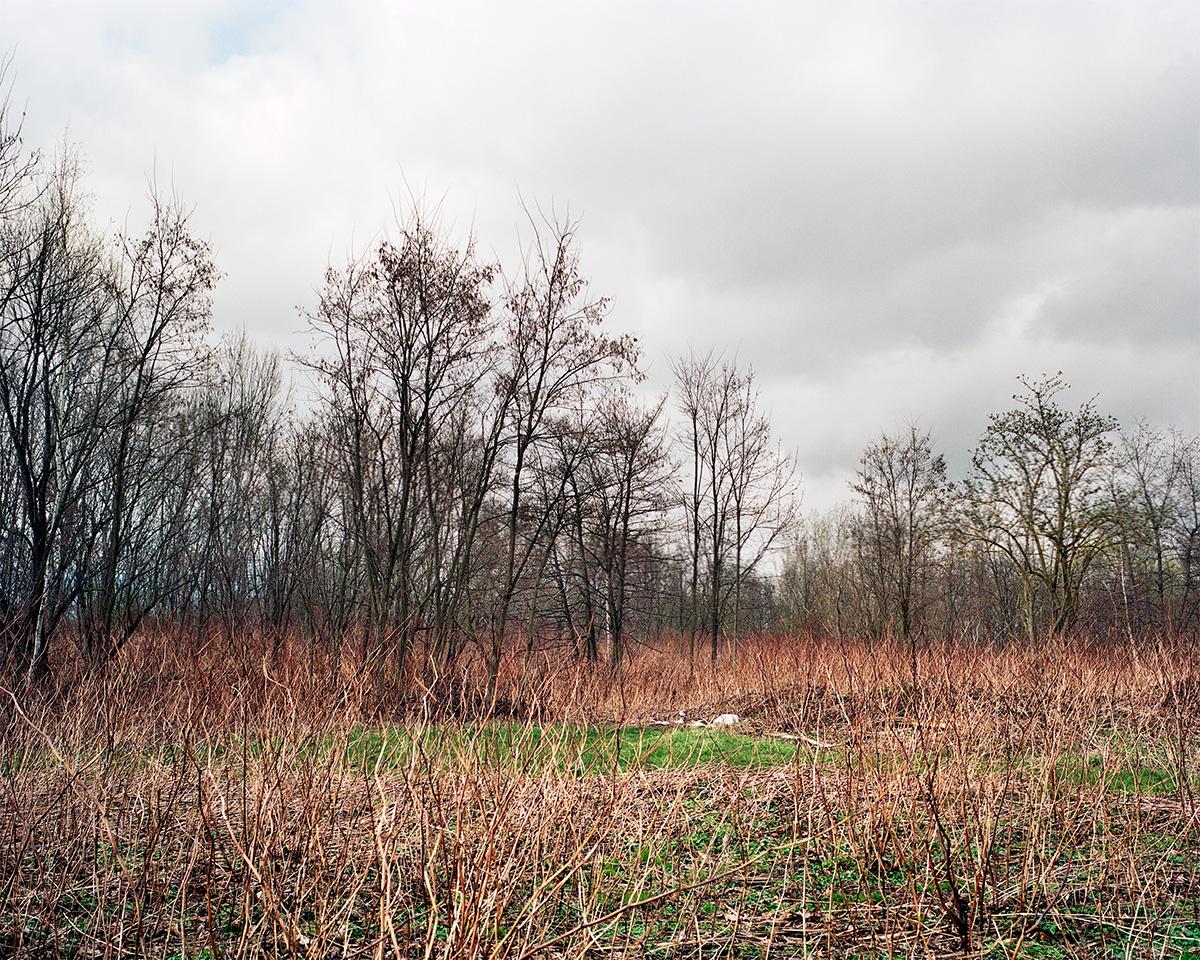 Jeanne Martel_landscapes_08.jpg