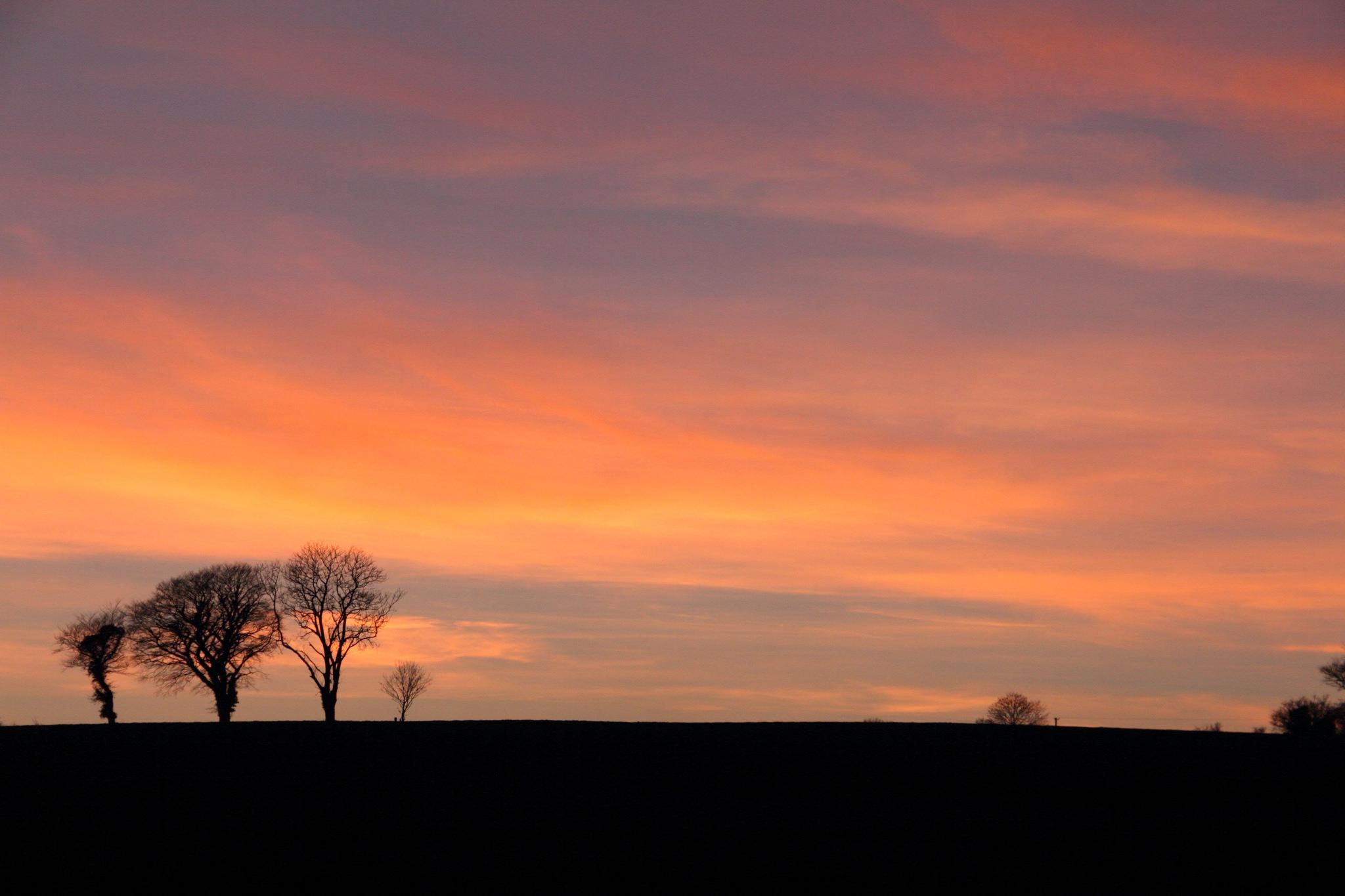 evening sunset, Clonmel