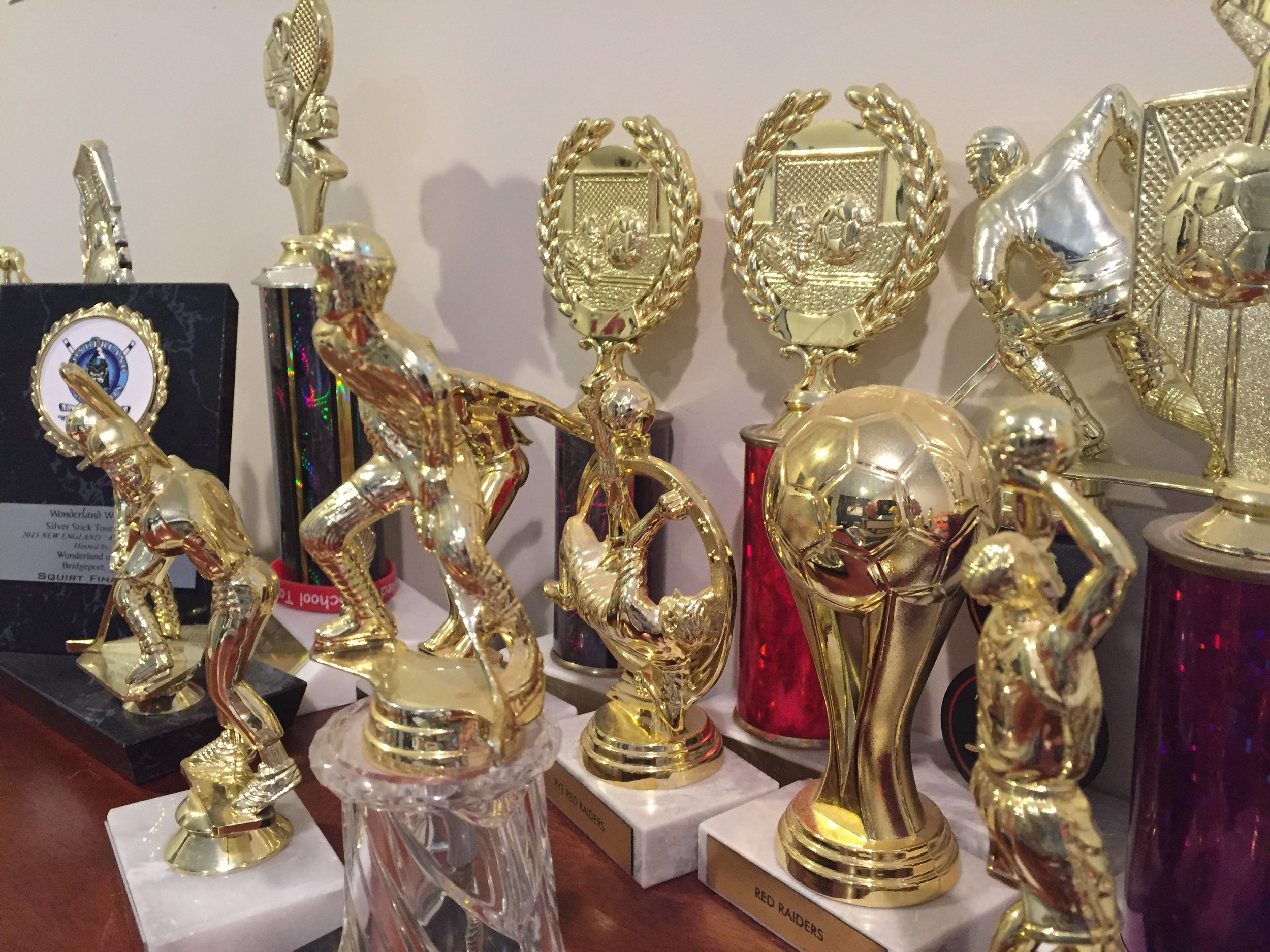 My sons' collection of trophies, mostly just for showing up.