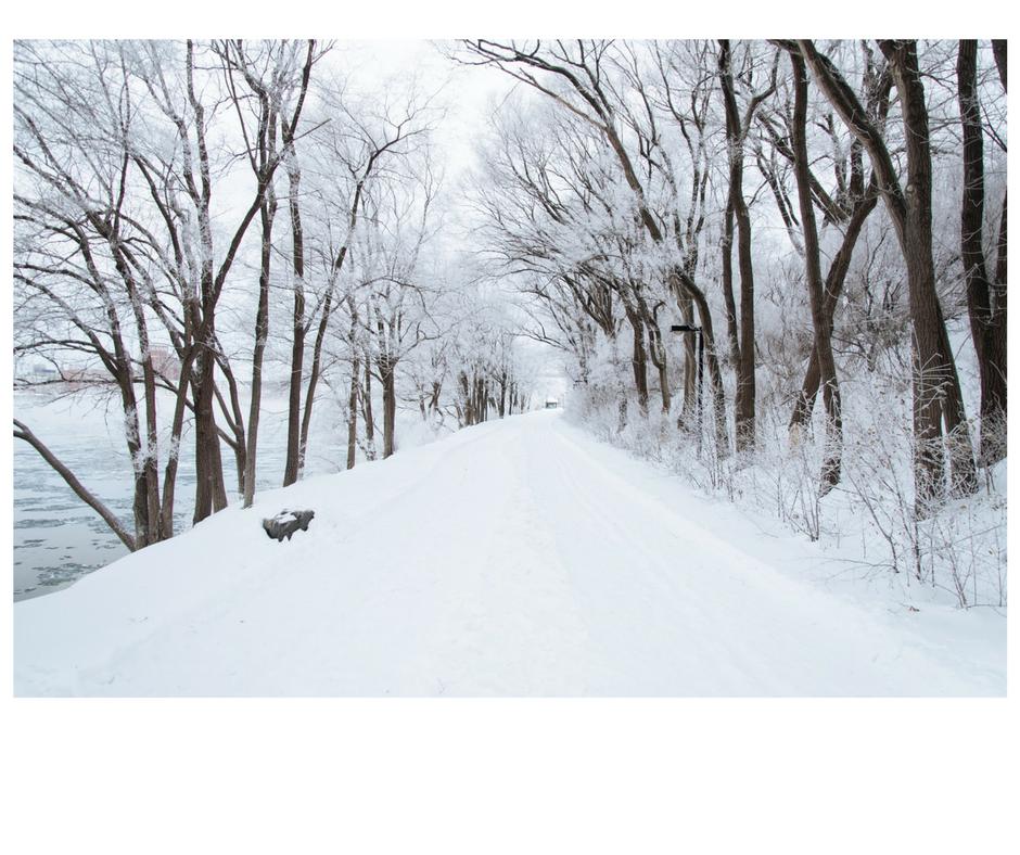 asheville-winter-activities-for-kids