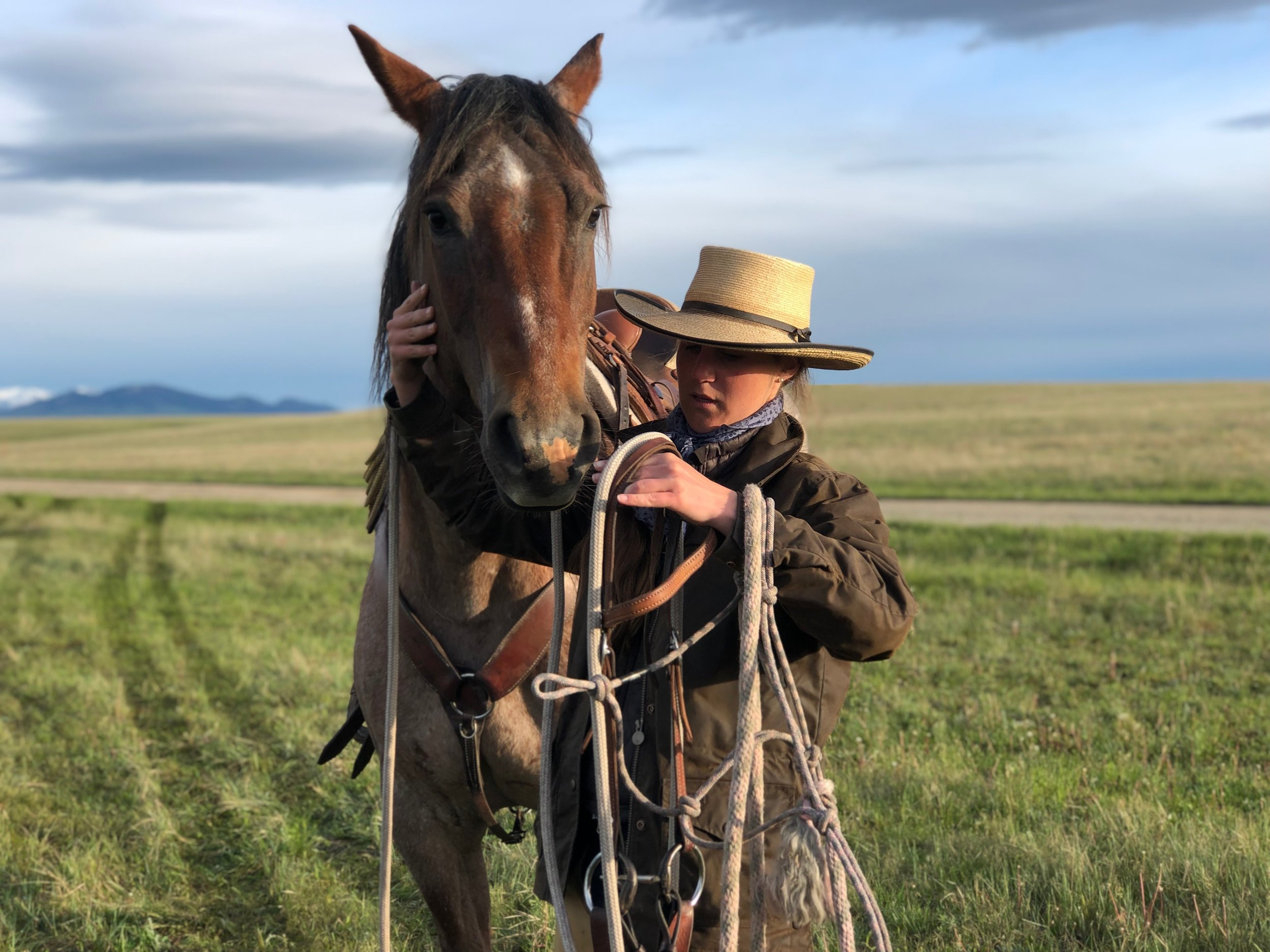 Getting ready to gather pairs before branding (Photographer: Hilary Zaranek-Anderson)