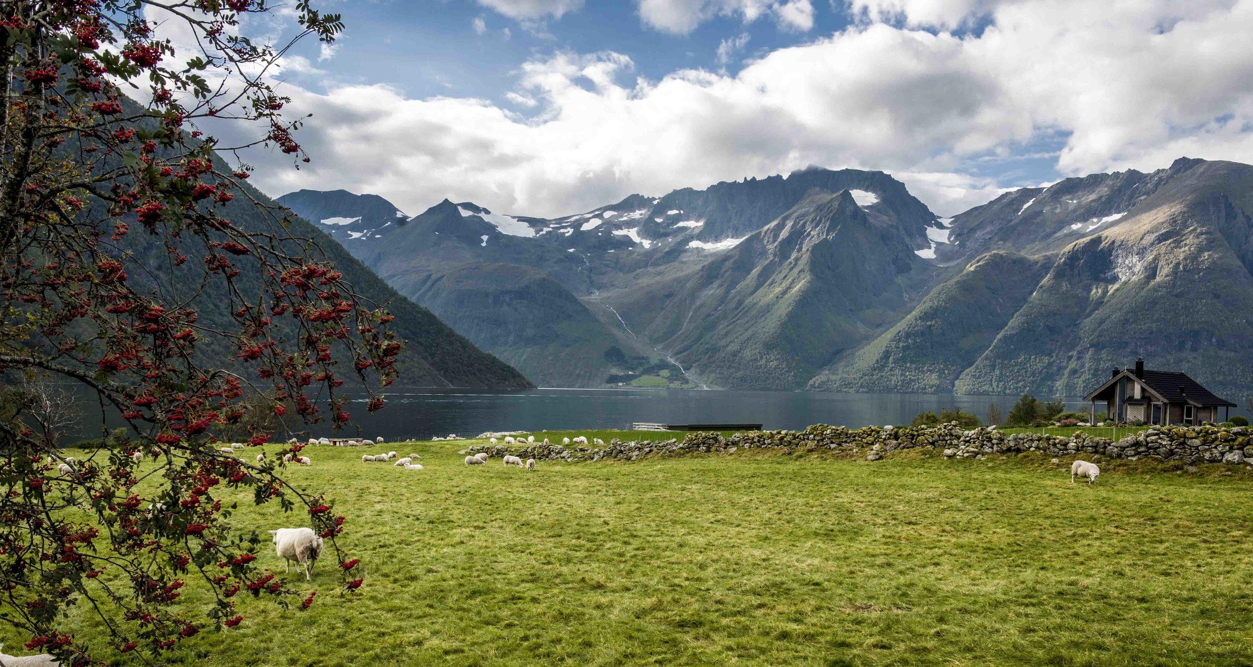 Urke in Hjørunnfjord