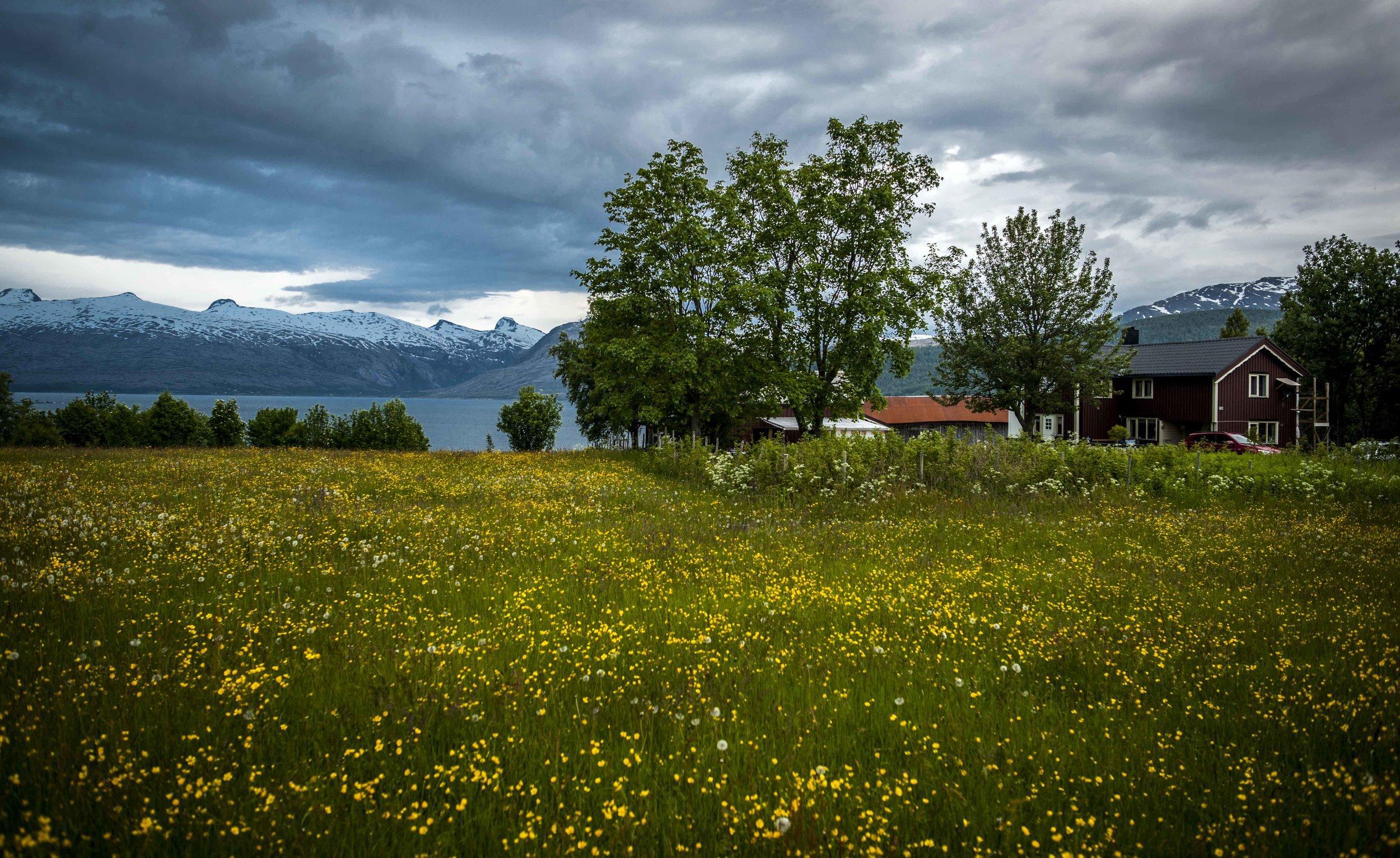 Sjona, Norway
