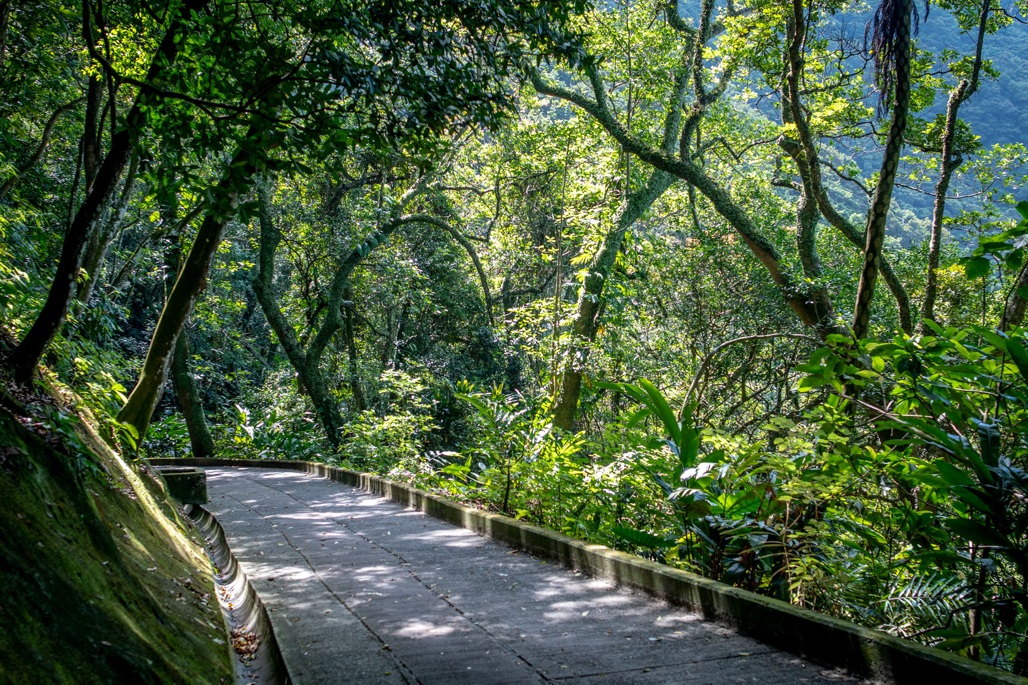 Path from Victoria Peak