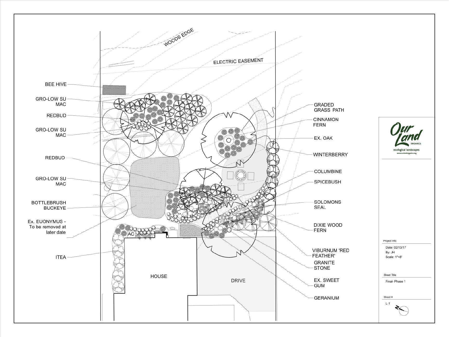 Ft. Thomas landscape design