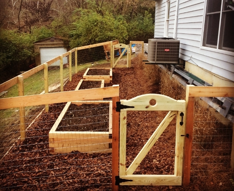 After - Raised Vegetable Bed - Note the switchgrasses will mature and soften the area around the foundation steel beam.