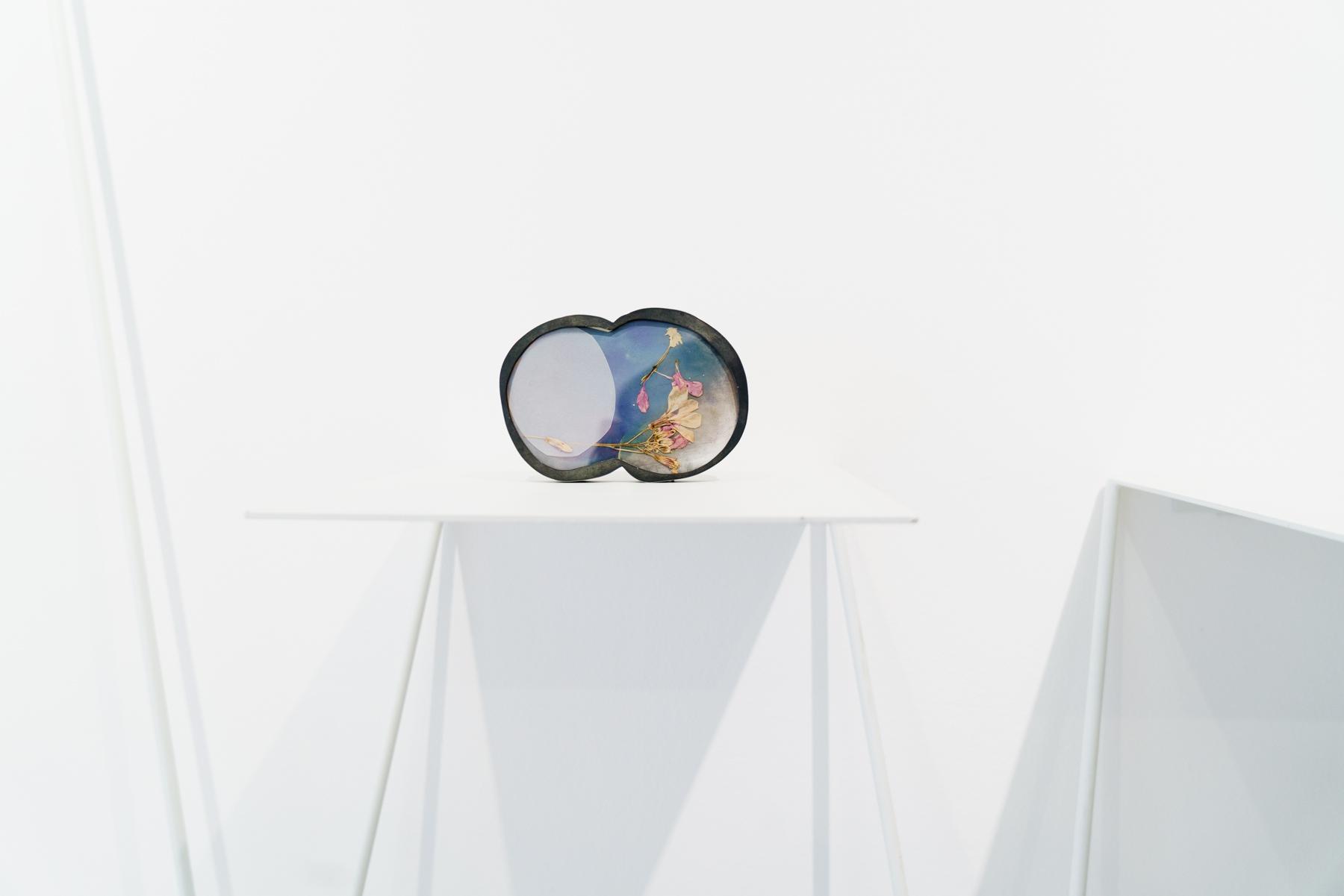 Exhibition view, Isabel Dammermann,  Treasuries&Transience , 2016, OHMYBLUE, Venice, Italy - photo: Riccardo Banfi