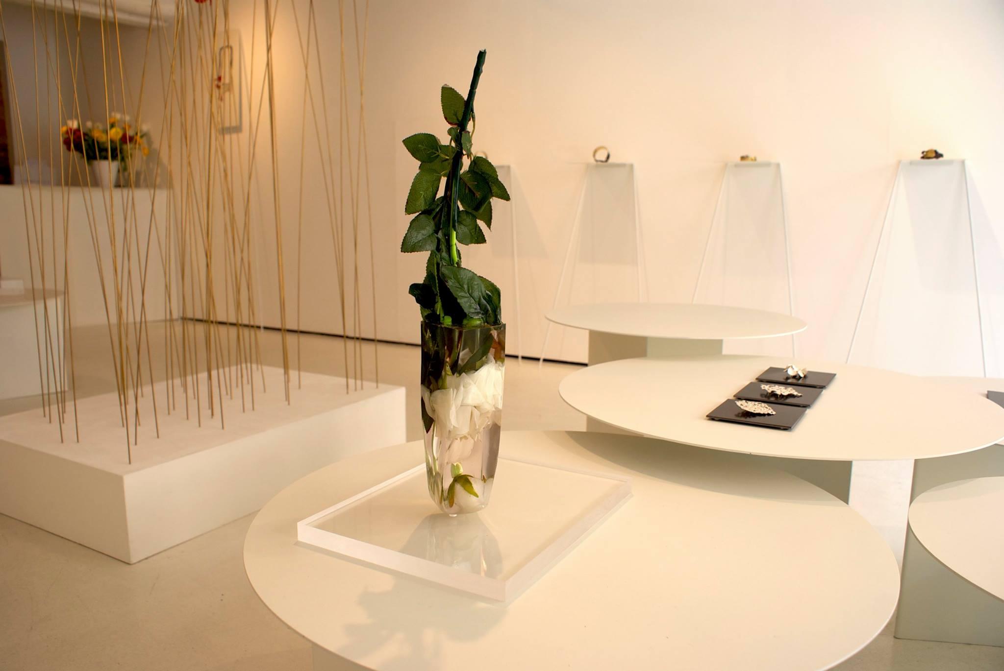 exhibition view,  Per Domani , Catalina Brenes, 2014, OHMYBLUE, Venice, Italy