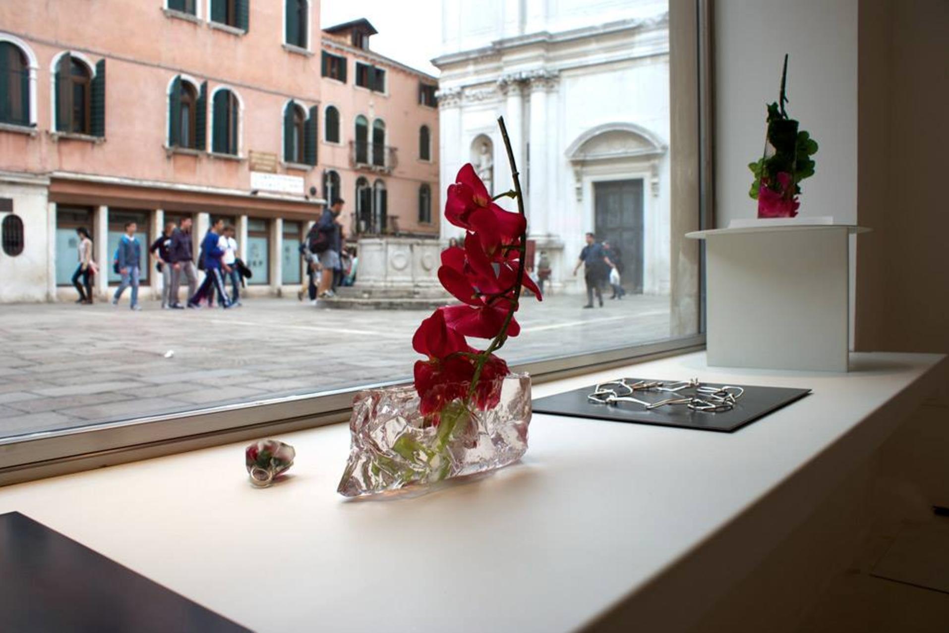 exhibition view,  Per domani , Catalina Brenes, 2014, OHMYBLUE, Venice, Italy, photo: OHMYBLUE