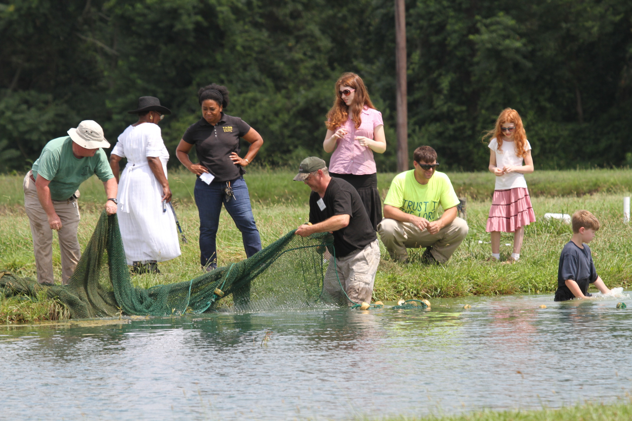 Fish school participants seine a catfish pond during a past Fish School program.