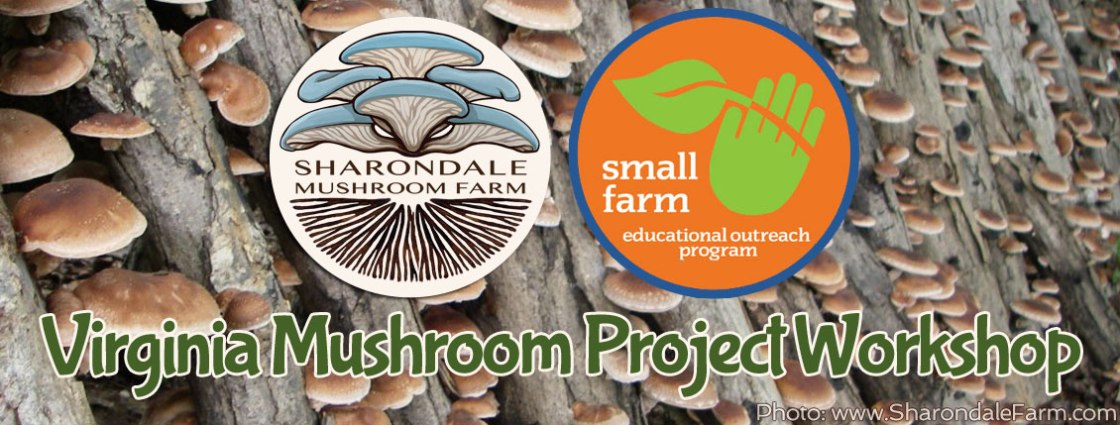 Virginia-Mushroom-Project-Workshop-1.jpg