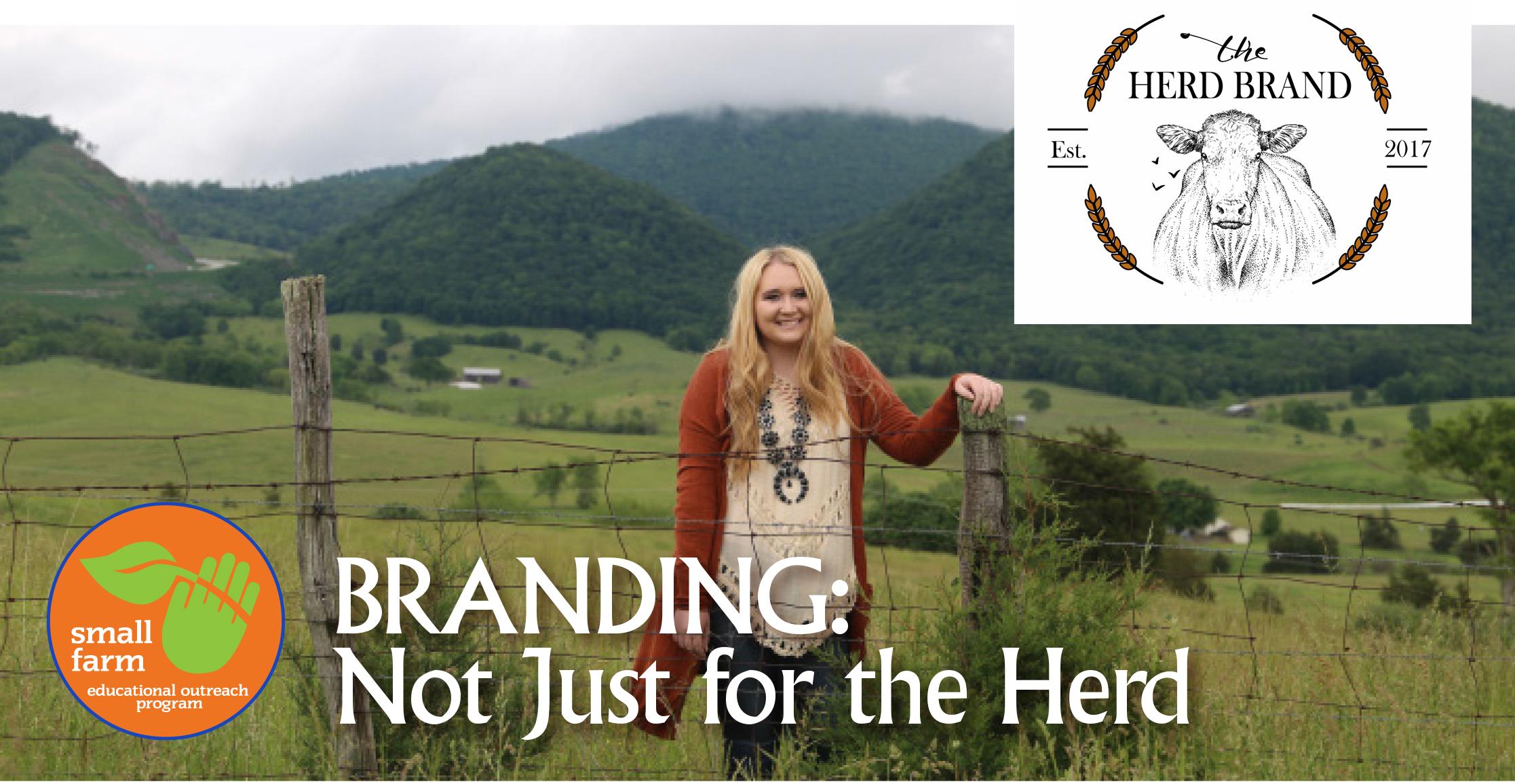 HerdBranding_banner.jpg
