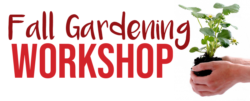 Fall-Gardening-banner.png