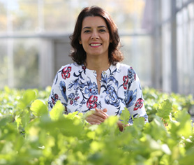 Dr. Toktam Taghavi, an assistant professor in horticulture, researches methods to extend produce shelf life.