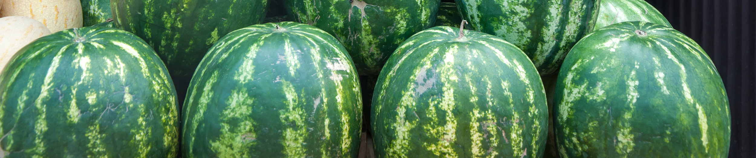 melonproduce_banner.jpg