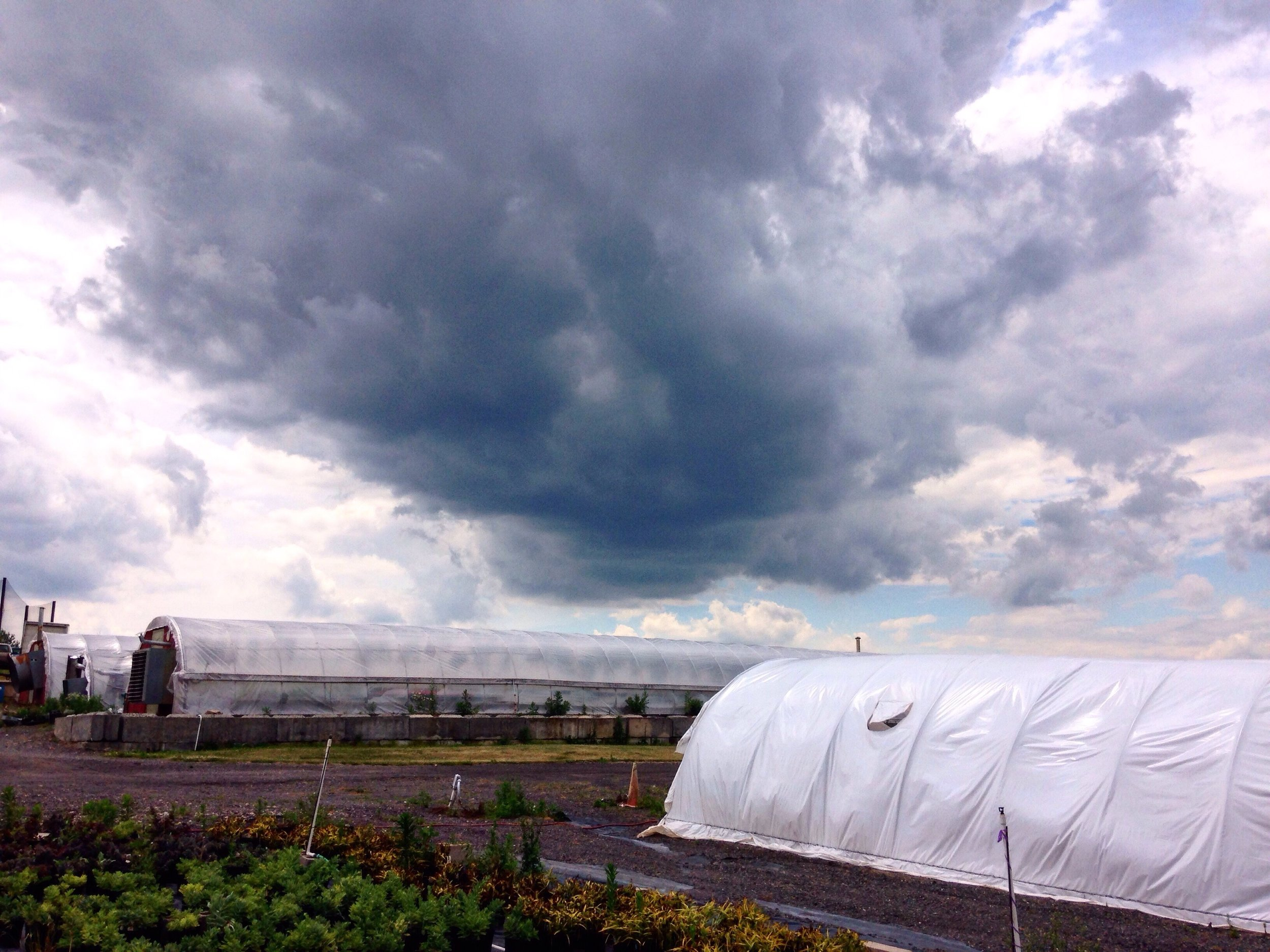 High Tunnels in Storms.jpeg