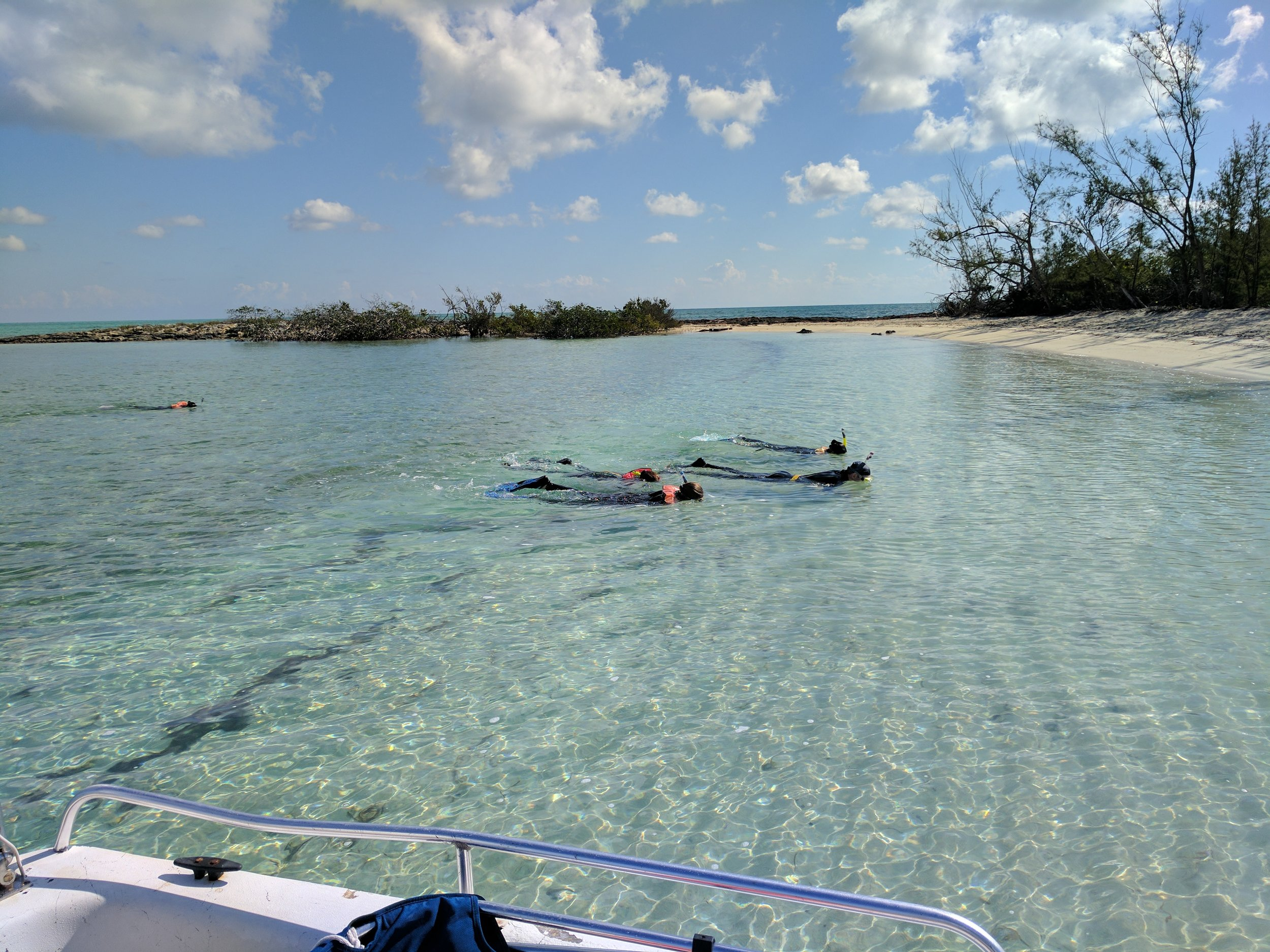 Saddleback Cay Snorkel Orientation
