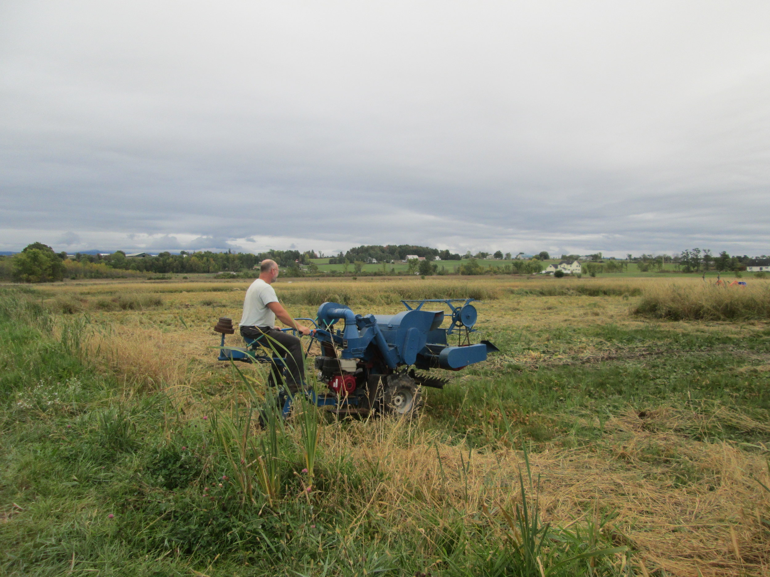 Our older Chinese rice combine. Three wheels of craziness!
