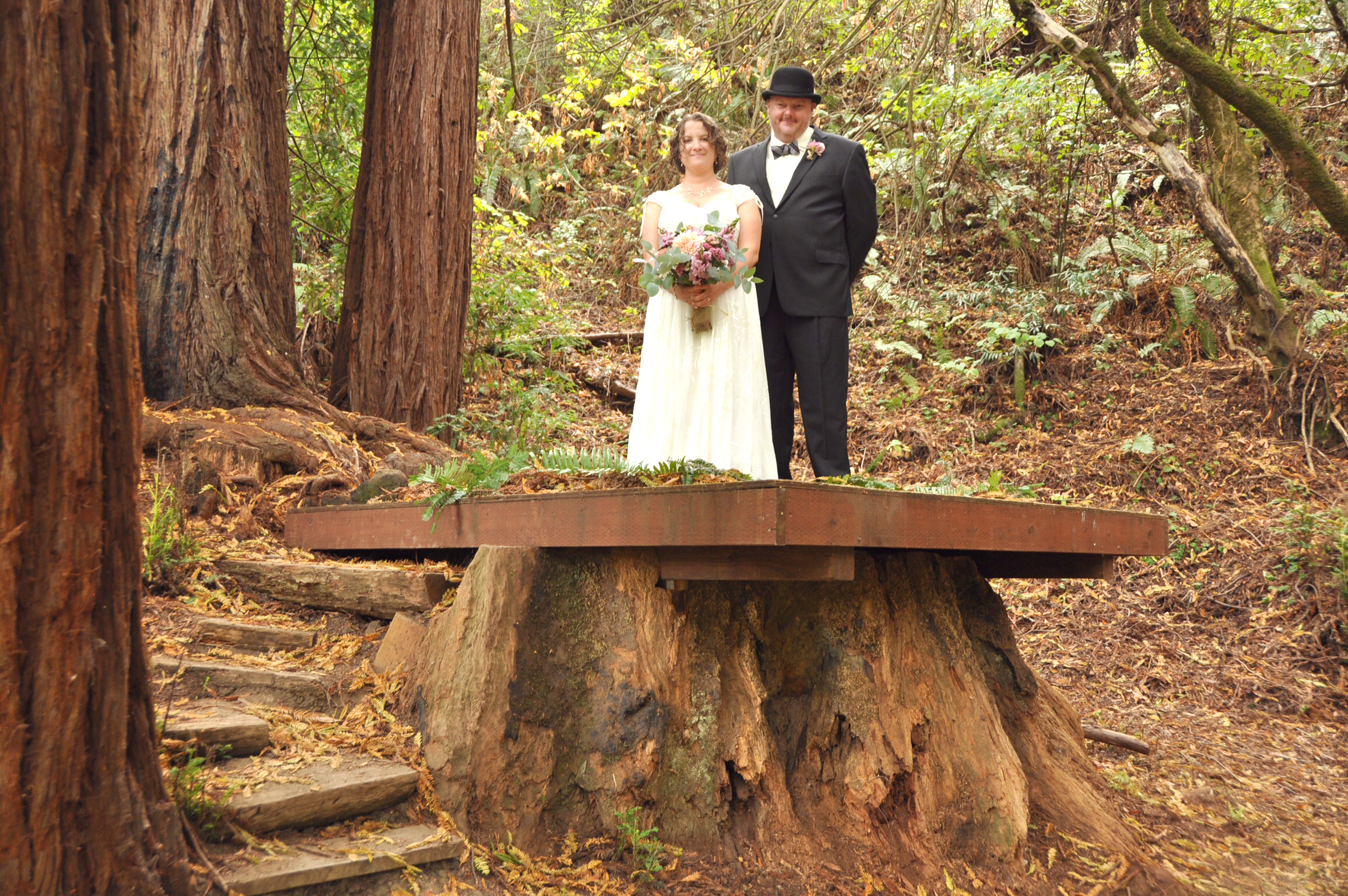 Our California wedding in the Redwood forest