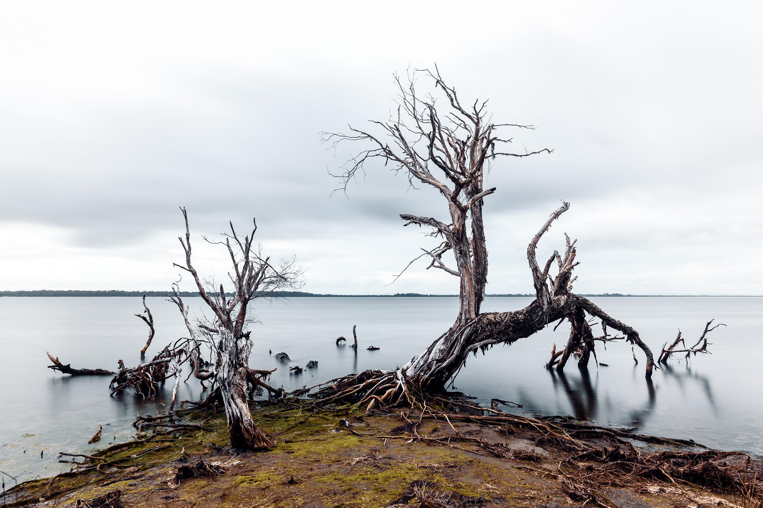 Harvey Estuary.jpg