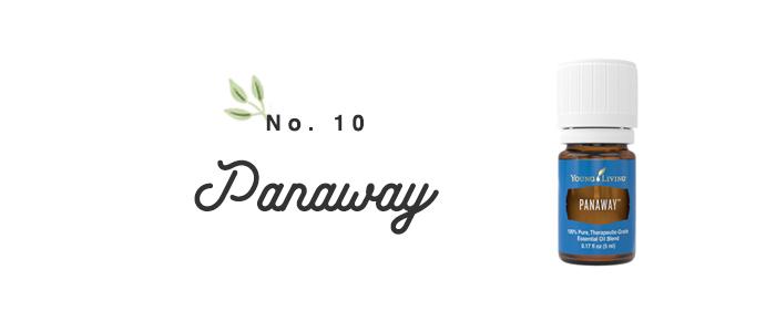 Panaway101.jpg