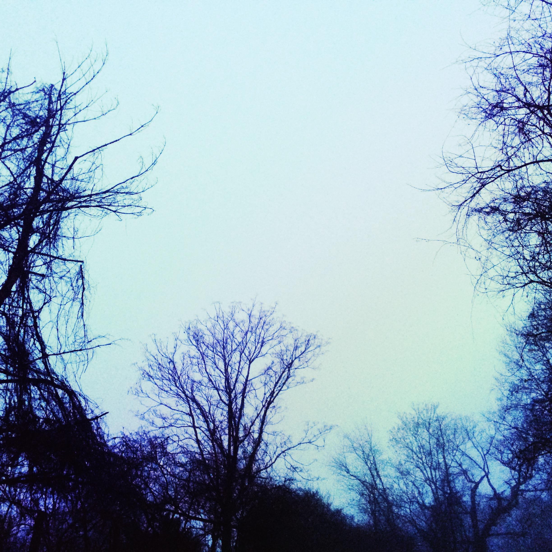 blue afternoon1.jpg