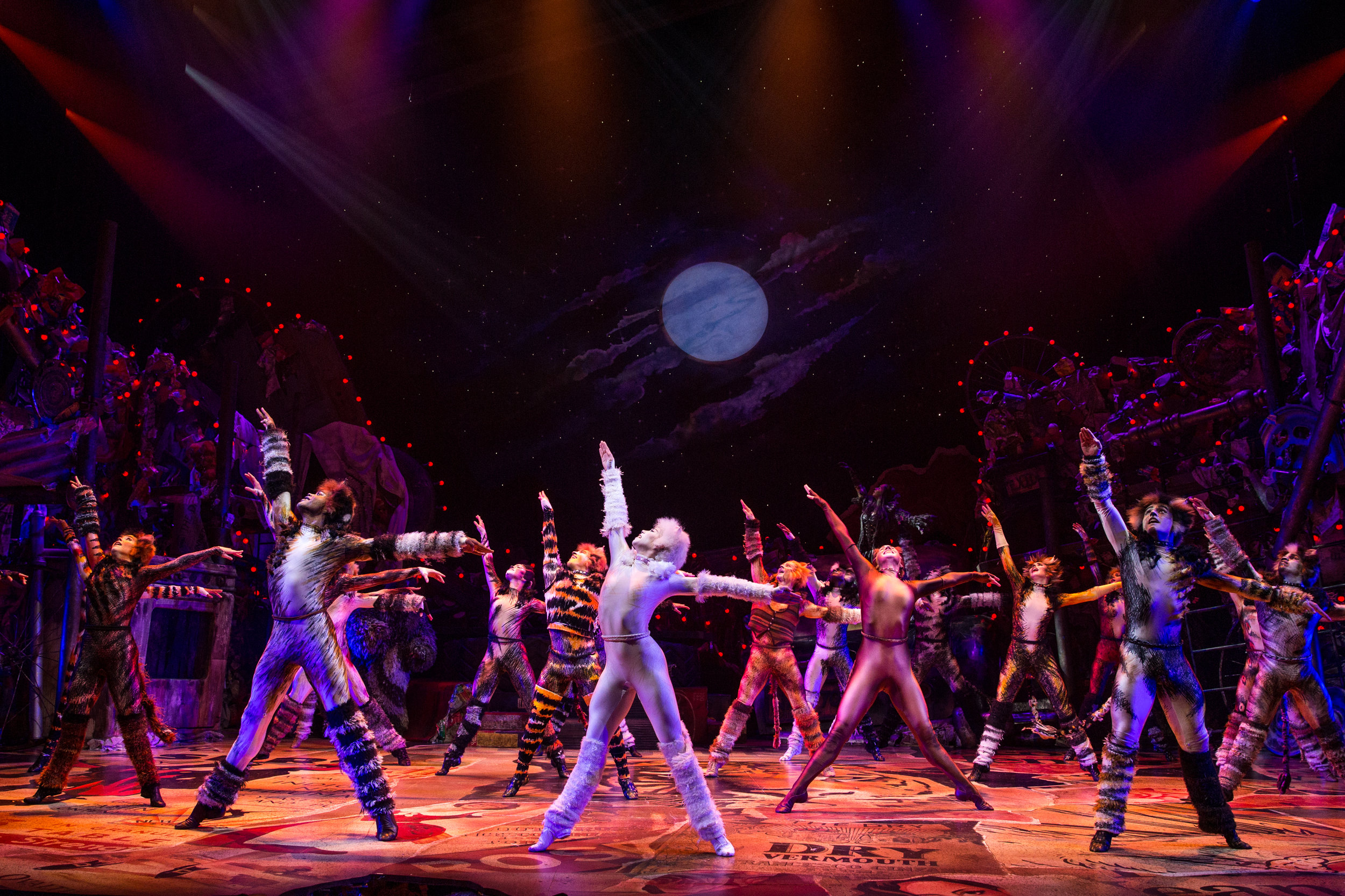 Company of CATS on Broadway Photo by Matthew Murphy.jpg