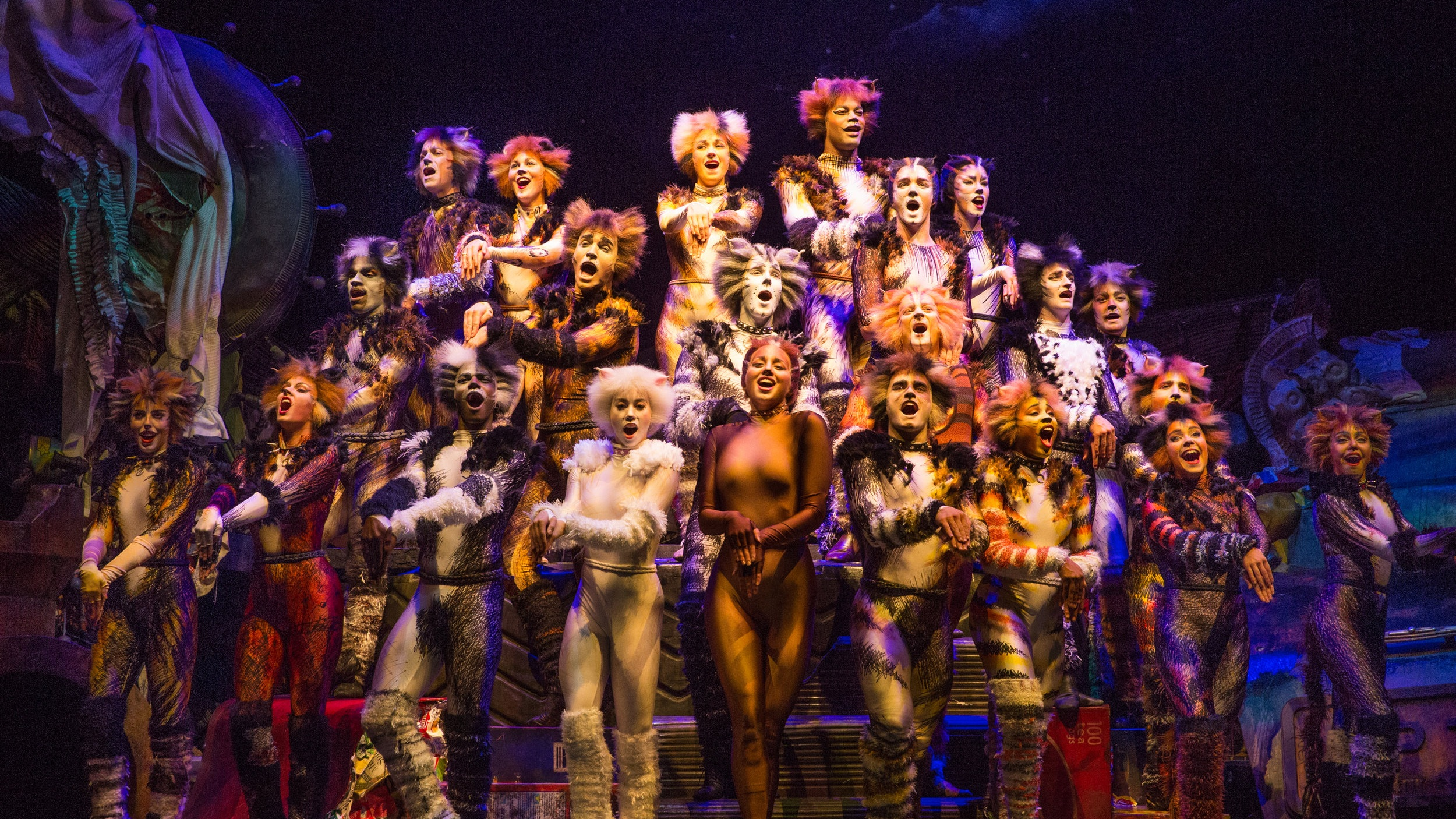 The+Company+of+CATS+on+Broadway+-+Photo+by+Matthew+Murphy.jpg