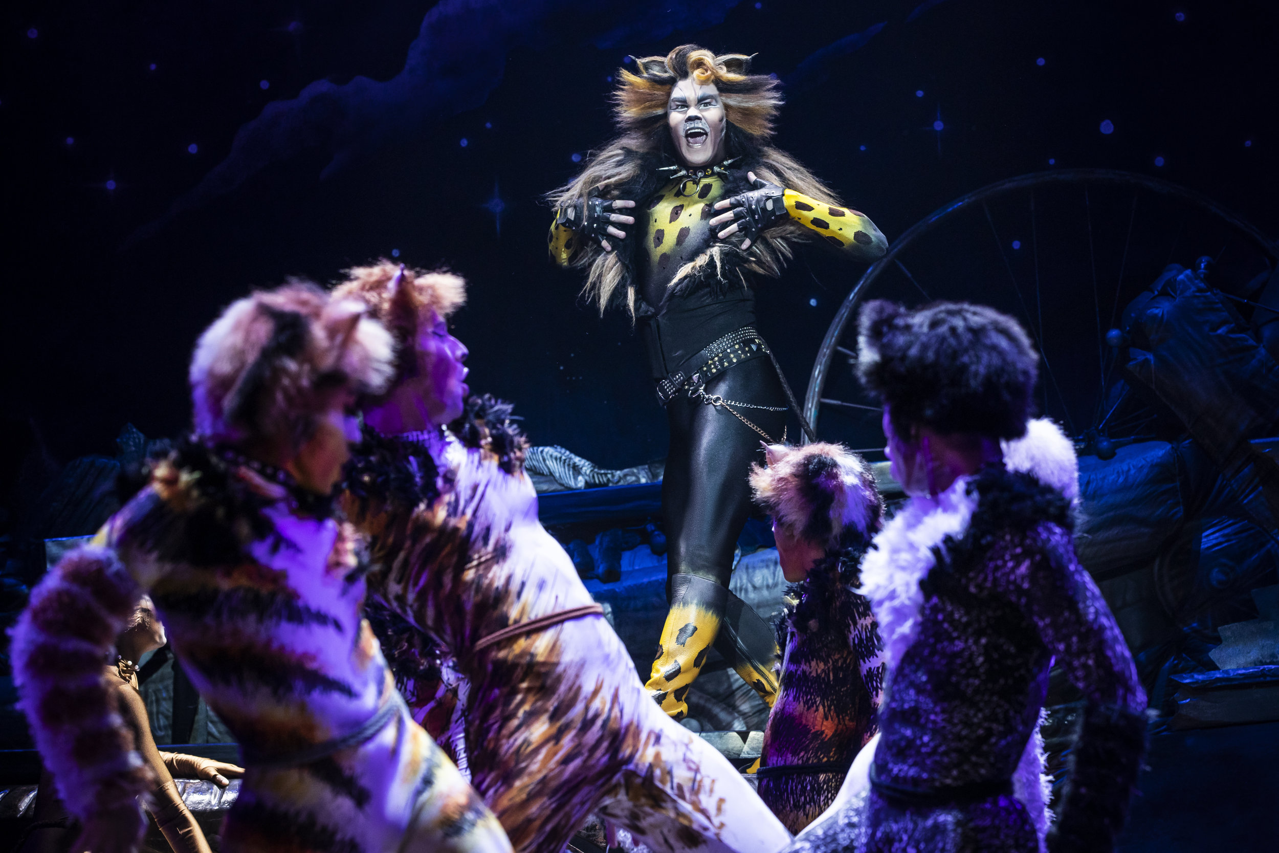 McGee Maddox as 'Rum Tug Tugger' and the North American Tour Company of CATS. Photo by Matthew Murphy. 2019.jpg