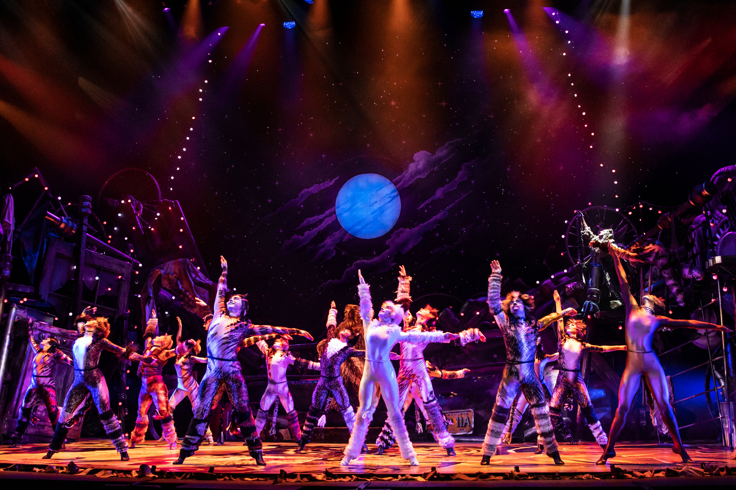 The North American Tour Company of CATS. Photo by Matthew Murphy. 2019 (2).jpg