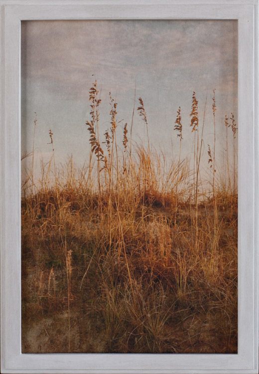 The Visits               Pigment print, artist made frame