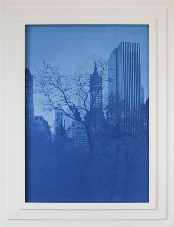 Against Nature         Cyanotype, artist made frame