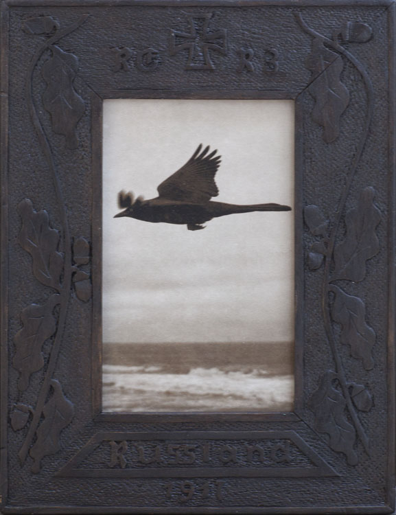 Bird Above the Sea  Pigment print, antique carved frame