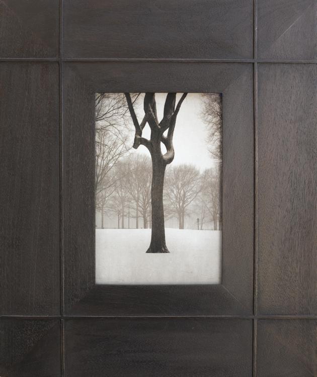 Tree, Central Park       pigment print, artist made frame