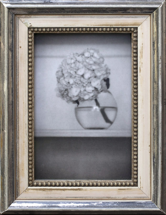 Still LIfe, Sutton Place            Silver gelatin print, antique frame
