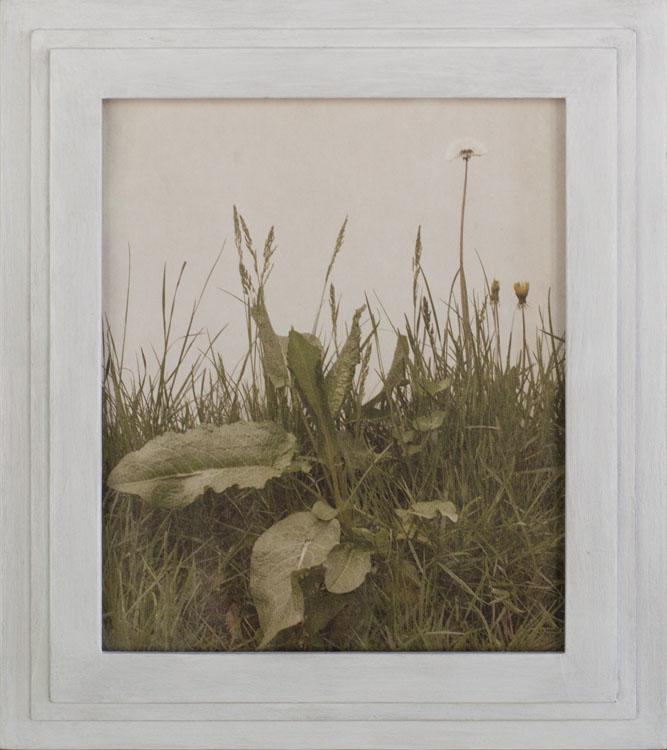 Durerzeit       Pigment print, artist made frame