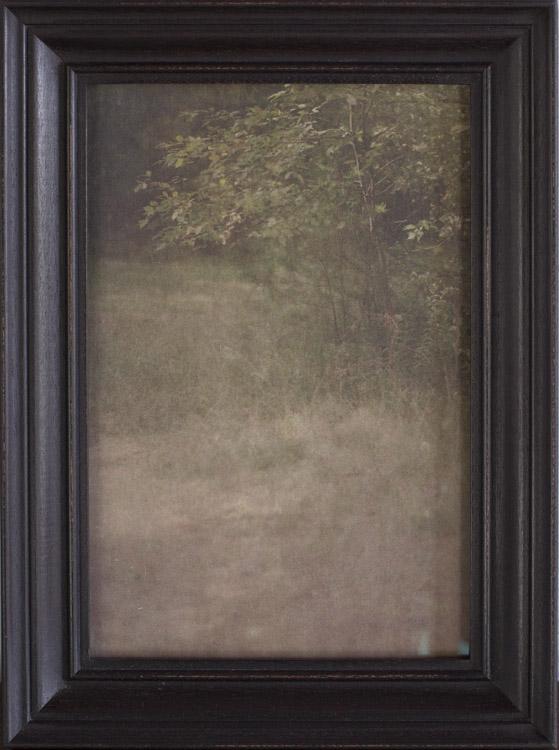 Landscape ( Nature Study )       pigment print, artist made frame