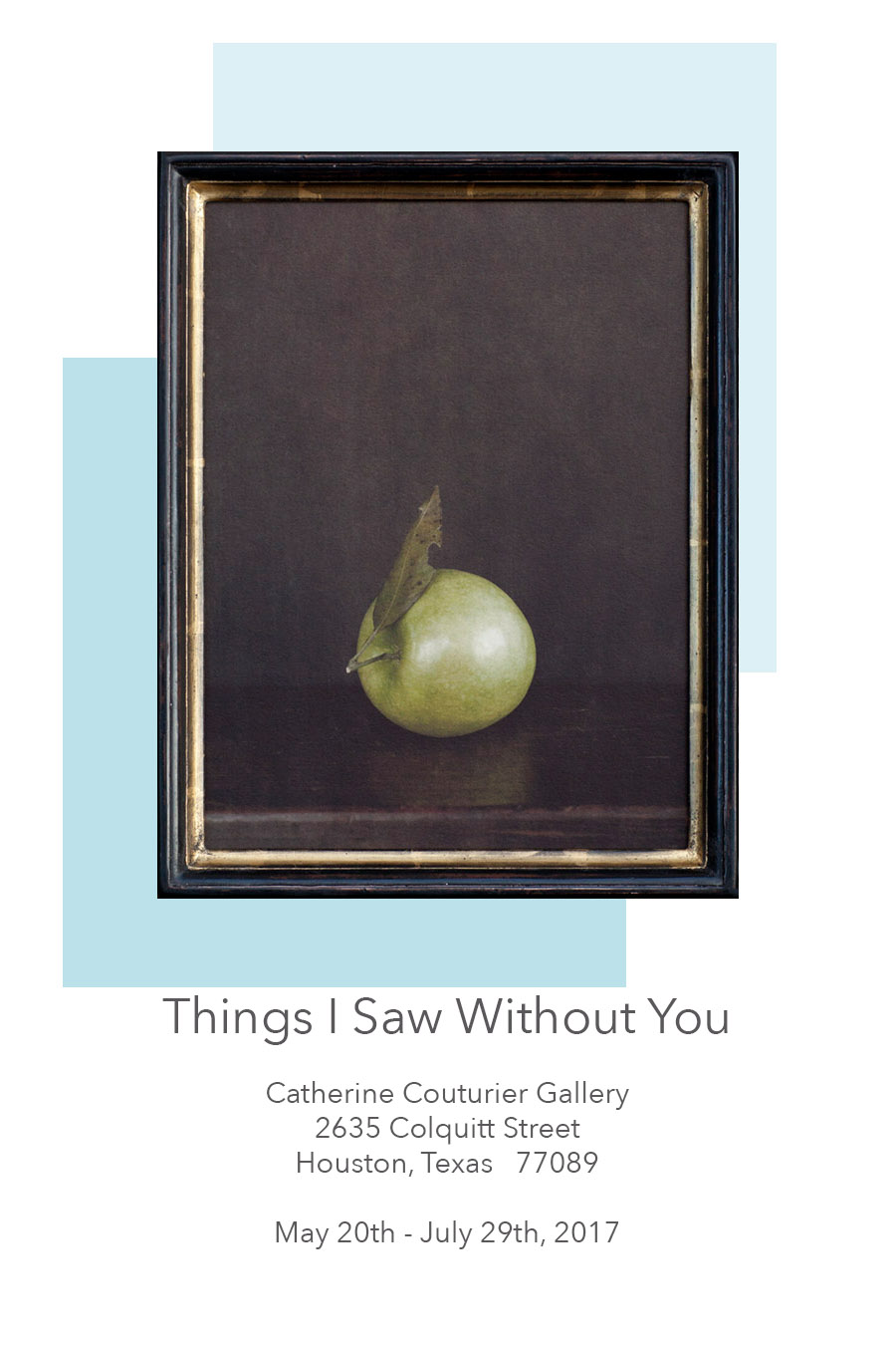 Things I Saw Without You  Solo exhibition at The Catherine Couturier Gallery, Houston Texas