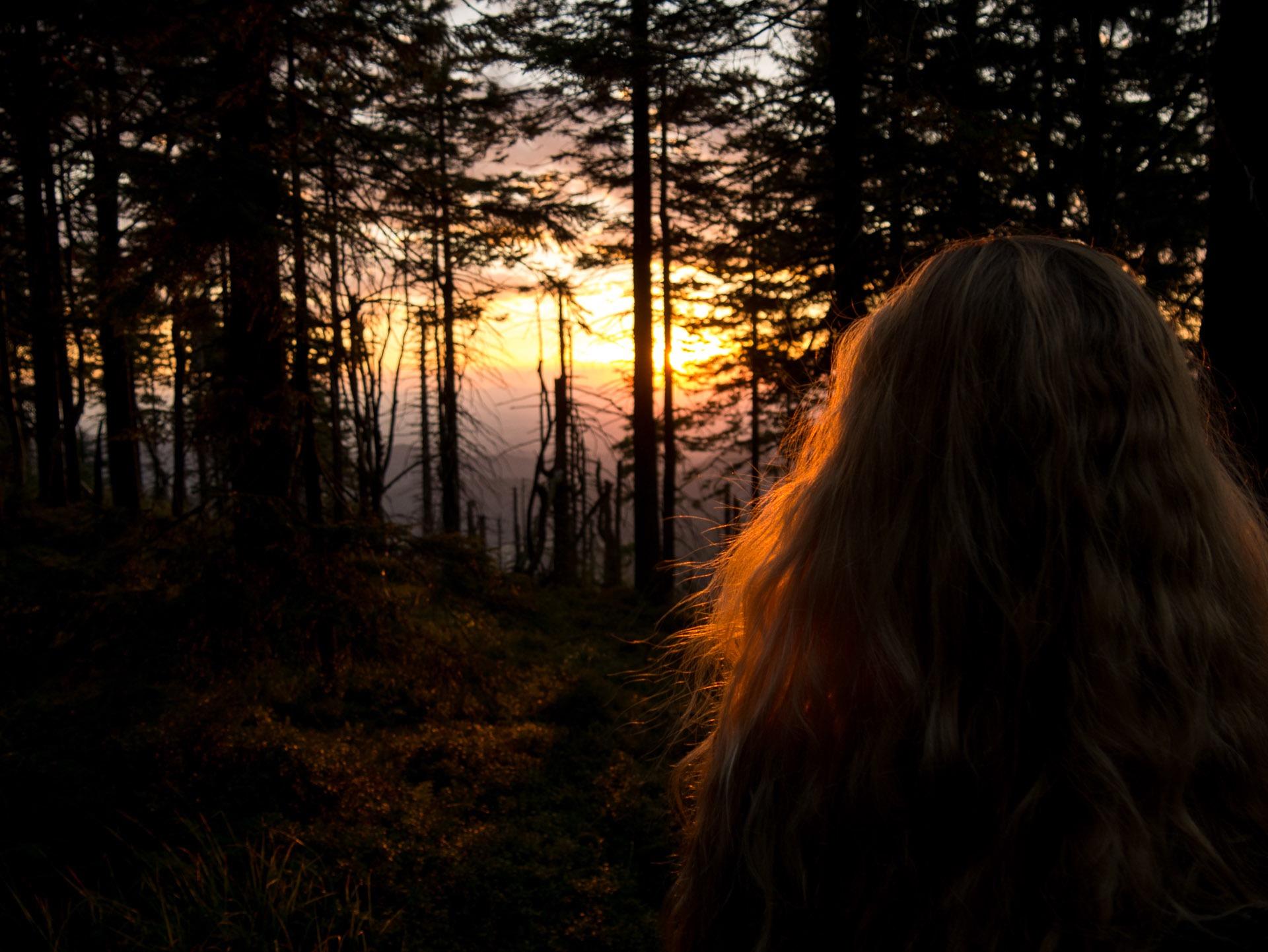 Einige lassen es sich aber nicht entgehen, kurz inne zu halten, um die wunderschönen Natur in aller Ruhe auf sich wirken zu lassen.