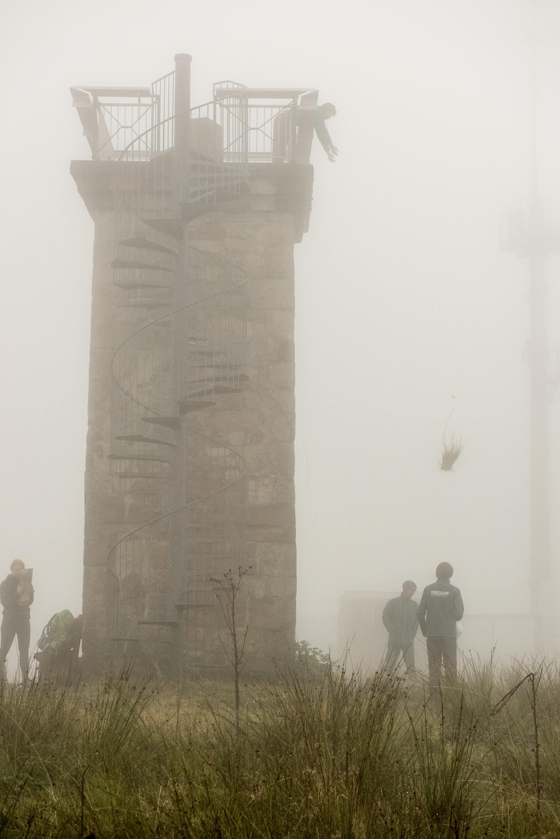 Gut mit Moos gepolstert fliegt das Ei vom Turm auf der Hornisgrinde.