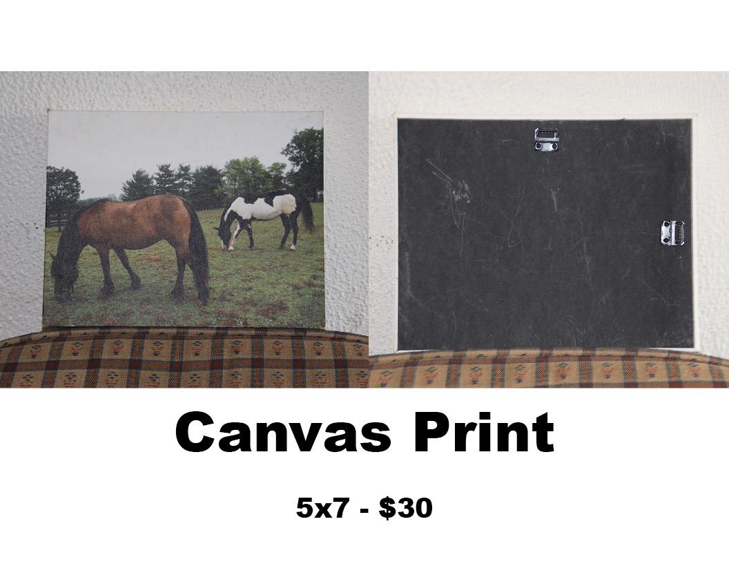 framed print 6.jpg