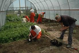 Prisoners propogating