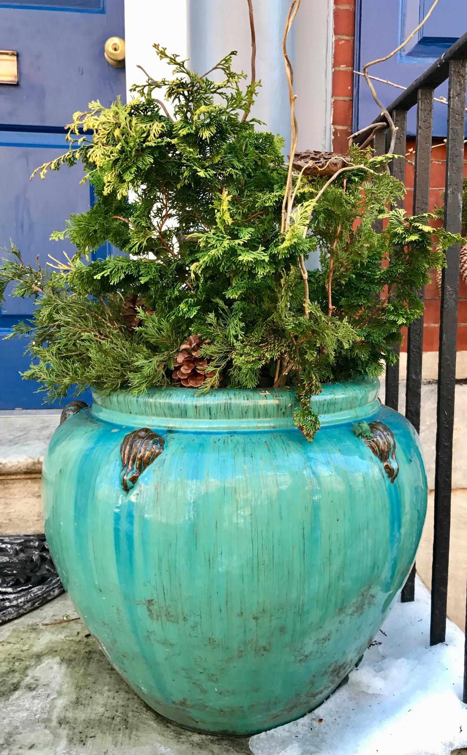 Evergreen Ceramic Container with Chamacyparis